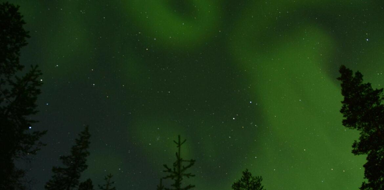 Noorderlicht tijdens Meant4Life outdoor coaching reis in Lapland