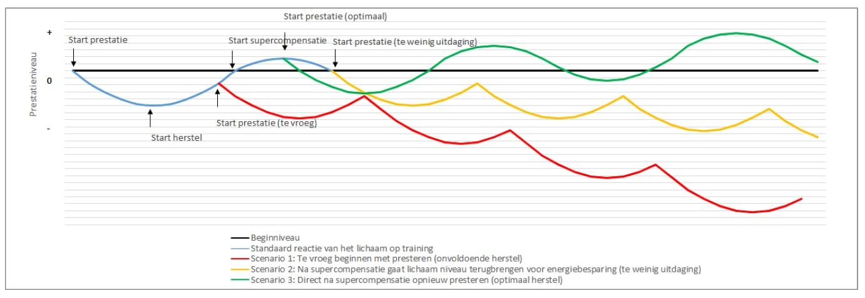 Supercompensatie - Beter presteren doe je zo - Blog - Heidi van Kampen - Meant4Life