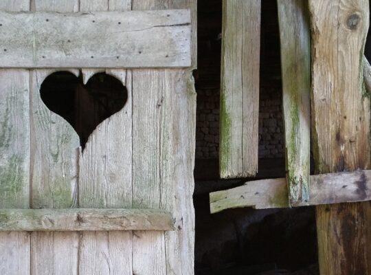 Een blog over jezelf durven zijn; onzeker en kwetsbaar ongeacht wat anderen ervan denken - Heidi van Kampen - Meant4Life